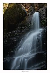 Bangalore Falls - NSW (marcel.rodrigue) Tags: australia newsouthwales jkamidnorthcoast marcelrodrigue photography nature midnorthcoast