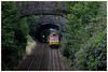 BRIDGES & BUDDLEIA (OLD GIT WITH A CAMERA) Tags: this morning murco run climbing out chepstow best viewed large class 60 60059