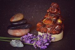 Being Relaxed by Receiving Happiness and Joy from my Happy Buddha #Explored 4-7-2017 (frankvanroon) Tags: macromondays relaxation relax happy buddha stone lavender macro macroshot mm hmm sigma105mm meditation freedom peace luck lucky happiness joy innerpeace 7dwf inexplore