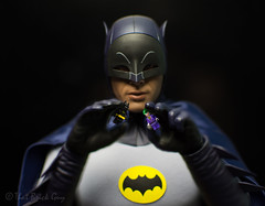Batman vs Joker (that_brick_guy) Tags: west adam adamwest actionfigures actionfigure figures figure action photography toyphotography 18g nikon d7200 minifigure legominifigure movie legobatmanmovie legobatman lego sideshowcollectibles sideshow toys toy hot hottoys crime prince clown clownprinceofcrime book comicbook comic dccomics dc detective cowl mask crusader caped capedcrusader knight dark darkknight batmanvsjoker joker batman