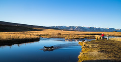 Once at autumn (joningic) Tags: autumn autumncolors dog landscape eyjafjörður eyjafjordur hörgársveit mountains mountain water creek lónið lónsá people akureyri fall