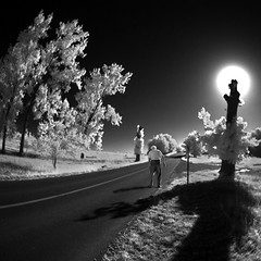 this way (old&timer) Tags: background infrared backandwhite composite surreal song4u oldtimer imagery digitalart laszlolocsei