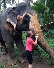 Bénévolat avec les éléphants - GlobAlong (infoglobalong) Tags: sri lanka éléphants animaux aide animalier bénévolat asie excursions pêcheurs mahout bain cultures
