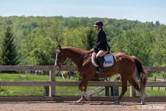 JBC_8665.jpg (Jim Babbage) Tags: krahc annualshow appaloosa horses bethany 193