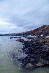 (Melissa Emmons Photography) Tags: kauai hawaii luckywelivehawaii monk seal monkseal turtle tortoise shoreline coastal island neverstopexploring canon canon5d landscape nature