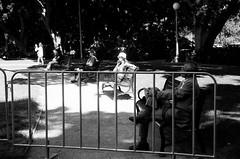 SUMMER SYDNEY (fisheryu3) Tags: bw hp5 film sydney art gallary