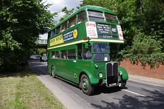 IMGP1969 (Steve Guess) Tags: leatherhead surrey england gb uk lcbs london transport country bus vintage preserved historic aec regent iii rt