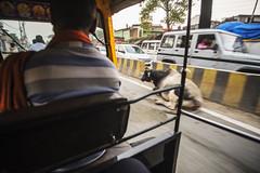 Las razones por las que el trafico de Varanasi es mas caotico aun (Nebelkuss) Tags: india uttarpradesh varanasi benarés asia tráfico traffic caos vacas cows tuctuc carretera highway fujixt1 samyang12f2 callejeras street namaste