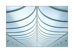 wings (Karl-Heinz Bitter) Tags: k20 düsseldorf museum dach decke licht bögen bows kurven abstract architektur architecture karlheinzbitter