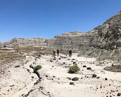 011 Hiking Across The Rock-Strewn Alluvium (saschmitz_earthlink_net) Tags: 2017 newmexico sanjuancounty angelpeakscenicarea kutzcanyon badlands mudstone