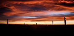 Guarding the skies (lizcaldwell72) Tags: hawkesbay sunrise napier cloud sky newzealand celestialcompass waitangipark pou light