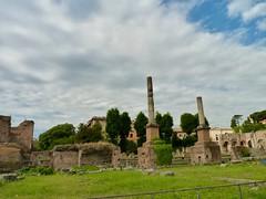 Foro Romano, Roma, Italia (javiercarmonareina) Tags: edadantigua imperioromano repúblicaromana ruinas historia antiquity romanempire romanrepublic ruins history