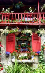Les fenêtres de Haute-Savoie ! (myvalleylil1) Tags: france alpes montagne mountain hautesavoie chamonix montblanc fleurs flowers balcon fenêtre montroc