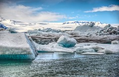 Ice Lagoon (Herculeus.) Tags: 2017 animals april aves breidamerkurjokulliceland charadriiformesgullsorder clouds europe glaciers iceland lagoon lake mountains ripples water snow iceberg ice
