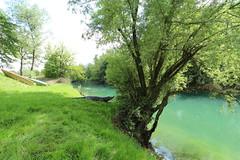 2017-05-12 15-15-00 - IMG_8770 (rudolf.brinkmoeller) Tags: wandern slowenien laibachermoor ljubljanskobarje landschaft natur ljubljanica gostilnarajskivrtnada rajskivrtnada