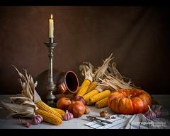 BODEGÓN CON CALABAZA Y VELA (Miguel Calleja) Tags: bodegón stilllife stilleben naturamorta naturemorte vela candle calabaza pumpkin citrouille maíz corn