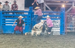 DSC_4345-Edit (alan.forshee) Tags: rodeo horse cow ride fall buck spin twirl bull stallion boy girl barrel rope lariat mud dirt hat sombrero