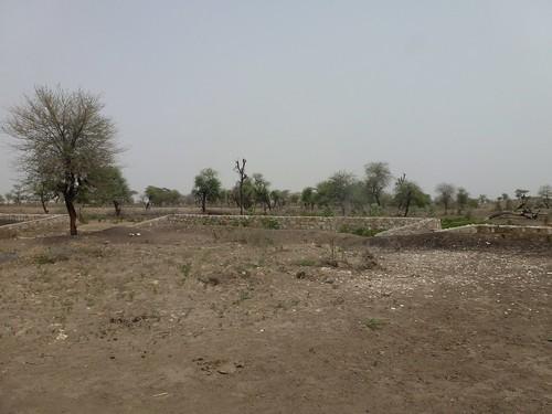Water-spreading weir, Afar, Ethiopia