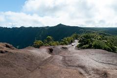 Pihea trail (_quintin_) Tags: kokee hawaii kauai trail landscape
