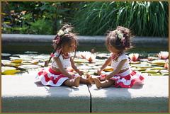 Die Minis ... einen Platz an der Sonne ... (Kindergartenkinder) Tags: annette himstedt dolls kindergartenkinder leleti essen seerosen wasserlilien grugapark