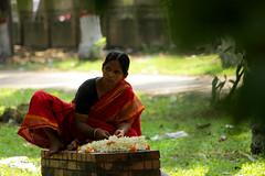 life in bengal (press & pleasure - pap) Tags: bangladesh bangladeshi bengali lifeinbangladesh asian asia