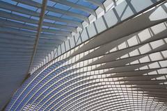 never a dull moment..... (ohank1951) Tags: shadows abstract architecture steel concrete glass lines curves blue sky gare station bahnhof calatrava luikguillemins luik lüttich liègeguillemins belgië labelgique belgium canoneos1100d efs1022mmf3545usm