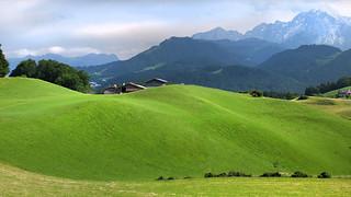 Wiesen wie aus Samt - meadows like velvet