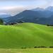Wiesen wie aus Samt - meadows like velvet (rotraud_71) Tags: germany berchtesgadenerland oberau mehlweg meadows summer sun mountain hohergöll