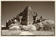 Bagan Temple 6 (S. Peterson) Tags: stevepeterson myanmar bagan temple infrared sepiatone