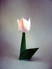 Tulipano - Nilva Pillan (Rui.Roda) Tags: origami papiroflexia papierfalten flor fiore fleur nilva fina pillan