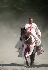 Szent László Days 2017 _ FP3851M (attila.stefan) Tags: stefan attila stefán pentax k50 győr hungary magyarország horse ló szent lászló napok festival fesztivál days
