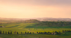 DSC_0088-Edit.jpg (saladino85) Tags: landscape sunset hilltop italy hills holiday tuscana blue tuscany scenery beautiful trees green rollinghills different corsano sunrise