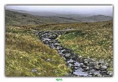 DIAMOND RIVER (régisa) Tags: paysage snowdonia gwynedd galles wales cymru river rivière dawnlandes pont bridge stone pierre ffestiniog