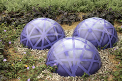 Purple Orbs 06222017 (Orange Barn) Tags: thedomes mitchellparkdomes milwaukeewisconsin purple