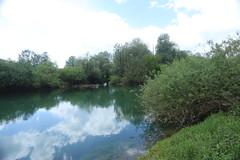 2017-05-12 12-08-56 - IMG_8710 (rudolf.brinkmoeller) Tags: wandern slowenien laibachermoor ljubljanskobarje landschaft natur ljubljanica