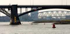 _DSC7640 (durr-architect) Tags: spiegelwaal ruimte room river waal nijmegen netherlands high water flood island bridge nevengeul