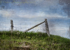 Against the Sky (HFF) (13skies) Tags: distressedtextures hff fence happyfencefriday hilltop sky texture fun wood wirefence north higher elevation clouds