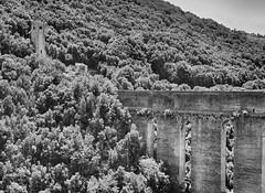 Ponte delle Torri VI (STEVE BEST ONE) Tags: ponte bridge torri tower pontedelletorri towersacquedottoaqueductpaesaggilandscapesanticoancientstoricohistorichistorymedioevomiddle agesmedieval period medieval works monumento monuments bn bw biancoenero blackandwhite monochrome hdr turismo tourism viaggi travel exploration spoleto umbria italia italy europa europe nikon nikonofficial nikonitalia d90 2013