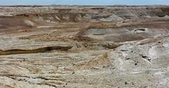 Desert du Neguev, Israel. (fred'eau) Tags: nature desert neguev israel