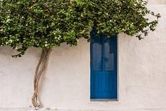 San Vito Lo Capo, Trapani, Sicilia (Rcri) Tags: tree albero nature green san vito lo capo sicily sicilia italia italy riflesso porta door blue