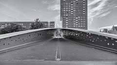 parkbrug spoor noord II (>>nicole>>) Tags: antwerpen aphogeschoolcampusspoornoord architecture architektur belgie belgien belgium bridge brücke fahrradbrücke flandern hochhaus monochrom monochrome neypartners parkspoornoord parkbrug skyscraper vlaanderen