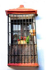 Janela com flores (Vera Schuck Paim) Tags: cidade no abismo abyss rural penhascos montanhas mountain verde green flores silvestres varias em varanda castelo castle praça de touros garden jardim artesão mirante miradouro ponte bridge building moradia pedras antiguidade antiquity alpinista square hotel door porta