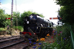 IMGP1776 (Steve Guess) Tags: watercressline midhants steam railway heritage line ropley alresford hampshire england gb uk bullied pacific battleofbritain34052 34053 lorddowding sirkeithpark 34052 braunton battleofbritain 34046 double heading