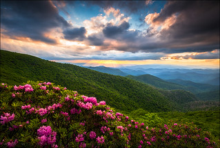 North Carolina Blue Ridge Parkway Scenic Landscape Asheville NC
