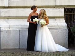 Black & White (Multielvi) Tags: new york city ny nyc manhattan midtown wedding party bride maid bridesmaid women bryant park candid library