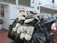 On the Balfour ferry (trilliumgirl) Tags: kootenay lake bc british columbia canada ferry vehicles stuffedanimals motorcycle