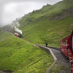 two mountain trains (M) (rhianwhit) Tags: syeam train mountain railway cogs alps engine switzerland rail cogandpinion hillside hill