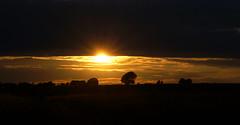 Salisbury Plain Sunset (SteveJM2009) Tags: salisbury plain widdington upavon wiltshire uk sun flare light colour clouds landscape silhouettes july 2017 summer stevemaskell explored