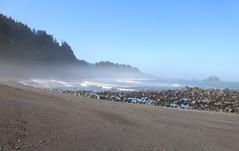 DeMartin Beach (elisecavicchi) Tags: demartin beach klamath california ca west coast pacific ocean coastal trail rock stacks shore waves dawn sunrise early light fog mist haze first morning blue reflection pebbles june summer layer