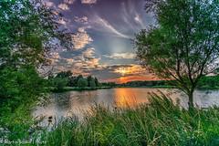 Sunset (martin.baskill) Tags: 2017 july lake rushcliffe sunset reflections water trees sky colour serene calm stillness